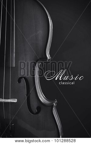 Classical violin. Black and white photo
