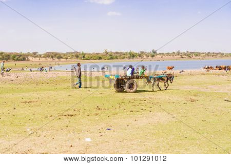 Lake Koka In Ethiopia