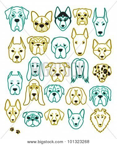 Set of 24 different breeds dogs neon handmade. Head dog
