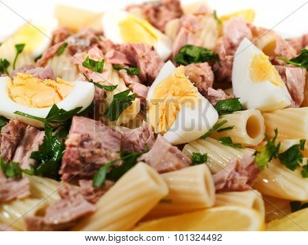 Pasta Collection - Macaroni With Tuna