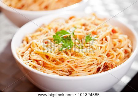 Pasta Collection - Spaghetti Bolognese