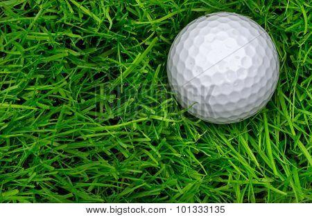 Single Golf Ball Laying In Semi Rough