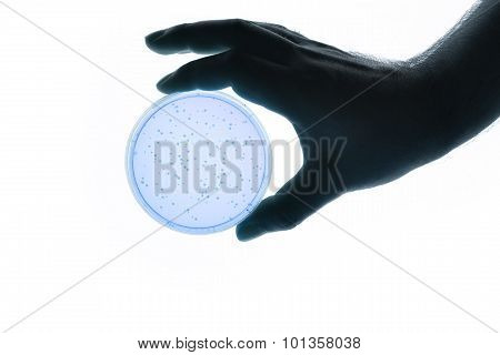 Hand With Petri Dish