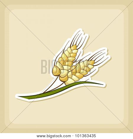 Spikelets Wheat Icon, Harvest Thanksgiving Vector
