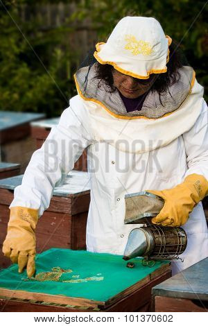 Beekeeper With Smoker