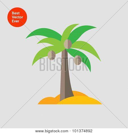 Coconut palm icon