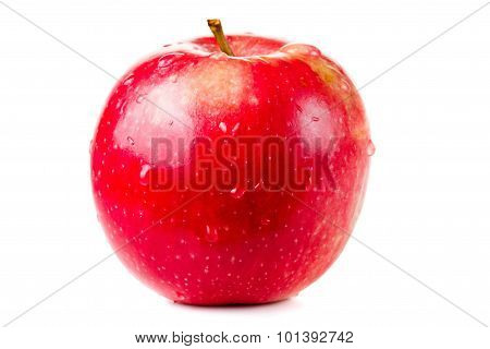Wet Red Delicious Apple Isolated On White