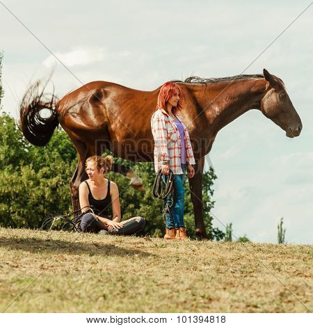 Young Women Girls Taking Care Of Horse.