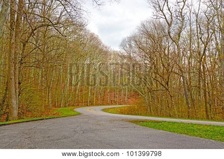 Mountain Road In The Early Spring