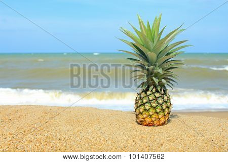 Pineapple On The Beach With Blue Sky