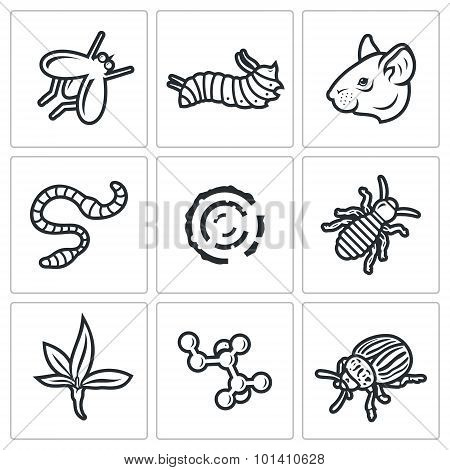 Parasites Icons Set. Vector Illustration.