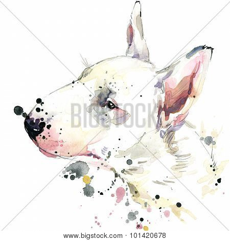 Bull Terrier dog T-shirt graphics. dog  illustration with splash watercolor textured  background.