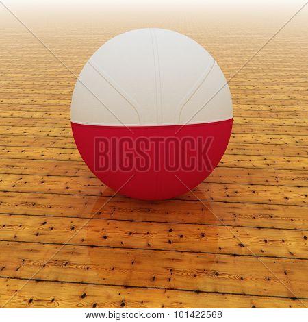 Poland Basketball