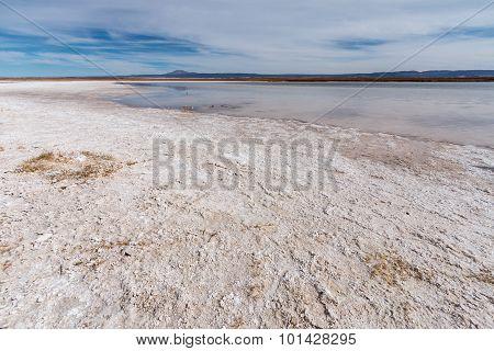 Salt flats, Laguna Cejar, Atacama desert