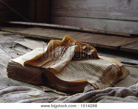 Book Forgotten
