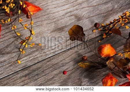 Fall - Autumn season Background