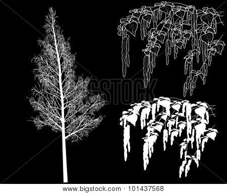 illustration with spring birch branches sketch isolated on black background