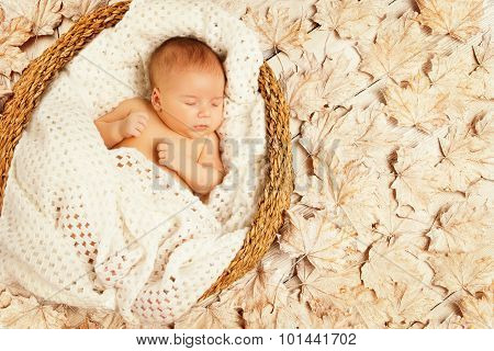 Baby Sleep Autumn Leaves, New Born Kid Asleep On Decorated Background, Newborn One Month