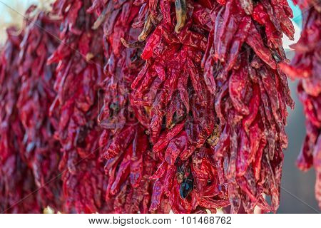 Dried red chili peppers hanging at the local Farmer's Market.