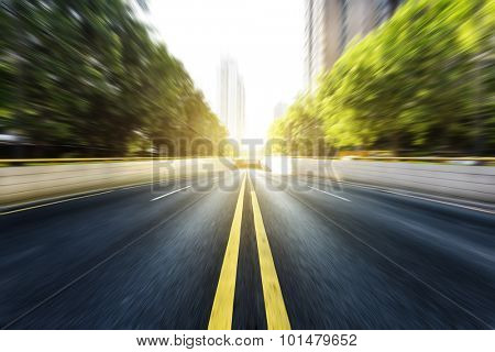 road flanked by neat rows of trees with the doubled solid lines under sunshine