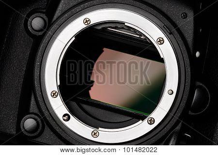 Camera Sensor