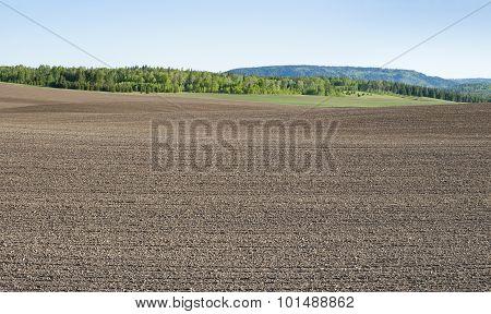Alpine Farmland