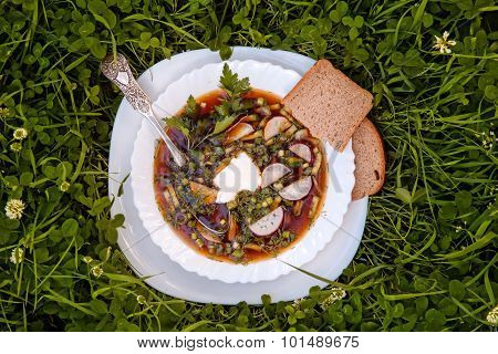 A Bowl Of Soup In The Grass