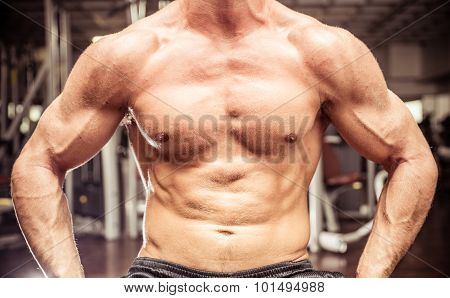 Body Builder Chest Close Up. Concept About Gym, Sport, People And Body Building