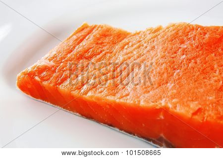 sinlge pink salmon bit on a big white dish
