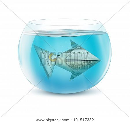 Creative Finance Concept, Dollar Fish In Aquarium Isolated On White