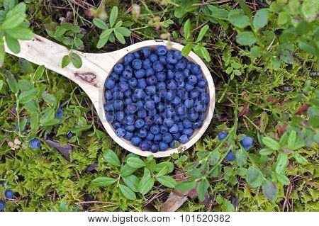 Wooden Bowl Of Blueberries