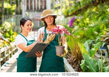 Describing Plant