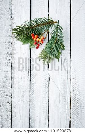 Small conifer and guelder branches over wooden background