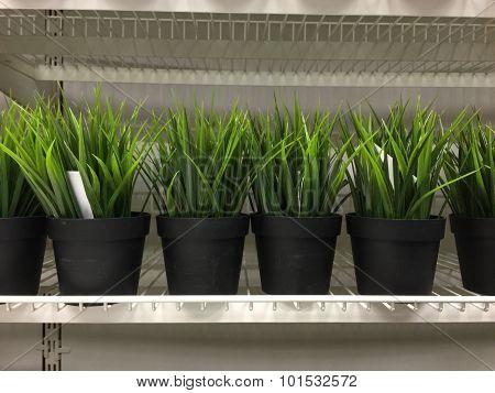 Green artificial grass on shelf