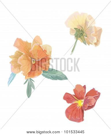 Set of flowers viola. Hand drawn illustration. Isolated design elements. Floral set. Gardening.