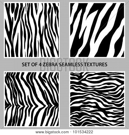 Set Of Four Zebra Seamless Patterns Collection
