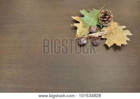 Fall Composition