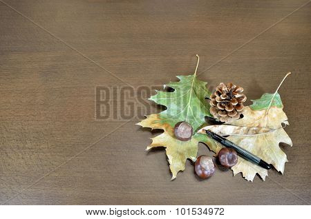 Dry Leaves And Chestnuts On Wooden Surface