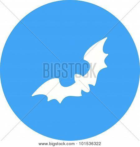 Bat , Animal