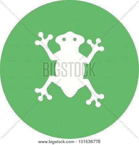 Frog , Animal