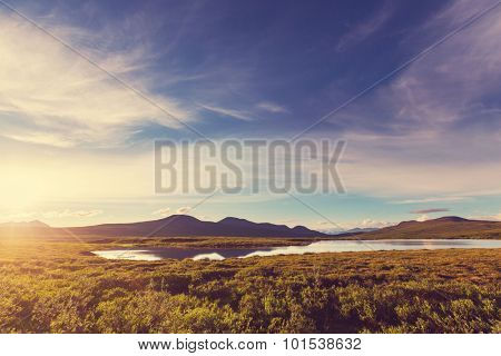 Tundra landscapes above Arctic circle