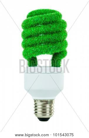 Eco light bulb isolated on white background
