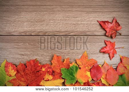 Autumn leaves over wooden background with copy space. Focus on maple leaves