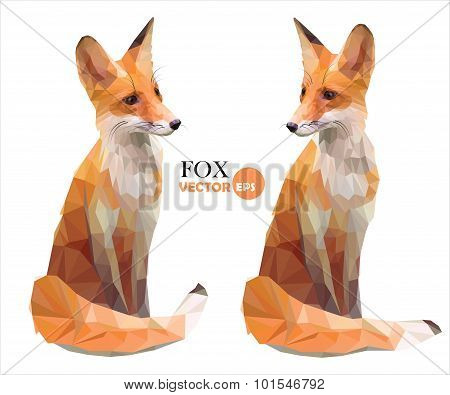 Set of two pictures vector red Fox in polygonal style