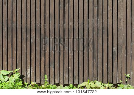 Old Brown Wooden Fence With Green Grass