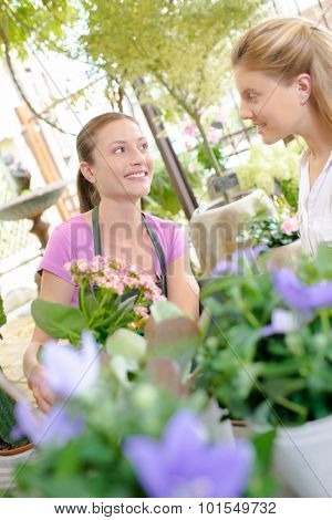 Florist serving customer