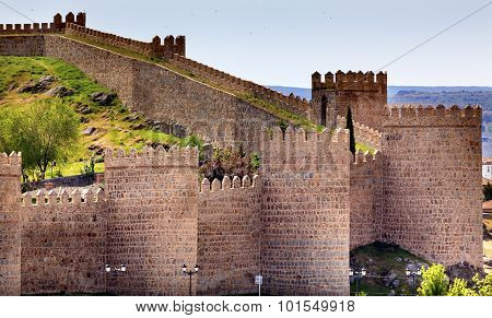 Avila Castle Walls Ancient Medieval City Cityscape Swallows Castile Spain