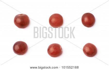 Six single dark red grapes isolated