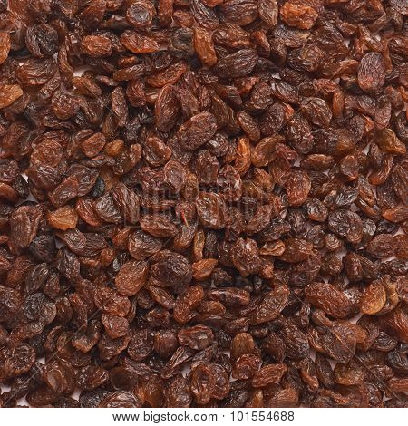 Surface covered with raisins
