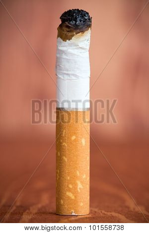 Cigarette Butt With A Filter